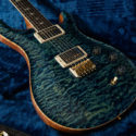 Wildwood Guitars Wood Library DGT Artist