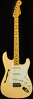Eric Johnson Signature Stratocaster Thinline