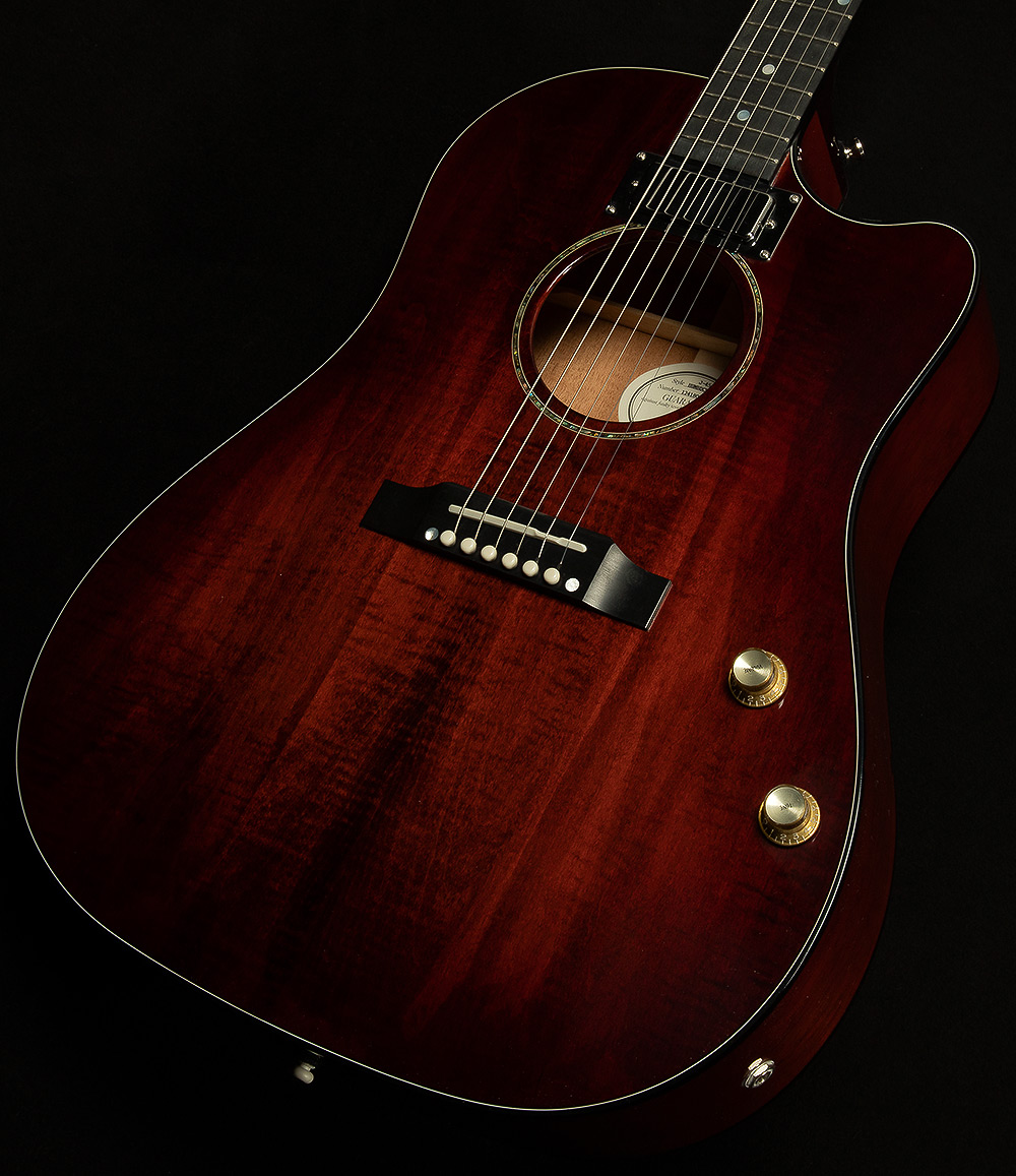 2019 Limited J-45 Humbucker | 2019 Gibson Acoustic Guitar