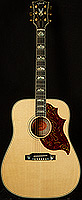 Gibson Firebird Acoustic
