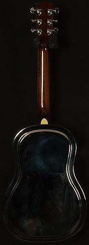 2006 Gold Tone Paul Beard PB-GRS Resonator