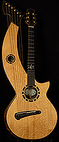 2014 Duane Noble Harp Guitar