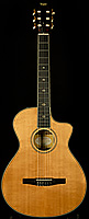 2012 Fall Limited Taylor GCce-N