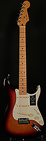 Player Plus Stratocaster